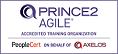 PRINCE2Agile sitzerland